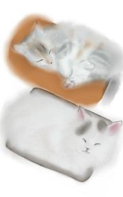 サラとみうのイラスト